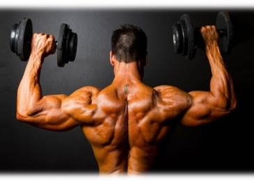 amplify muscles