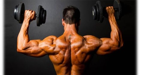 The Best way to amplify muscles in record time