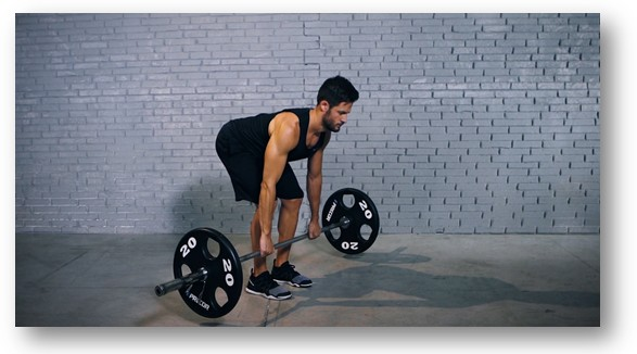 Back muscle exercises by lifting weights to the thigh