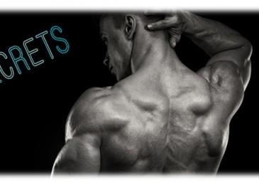 getting unique back muscles