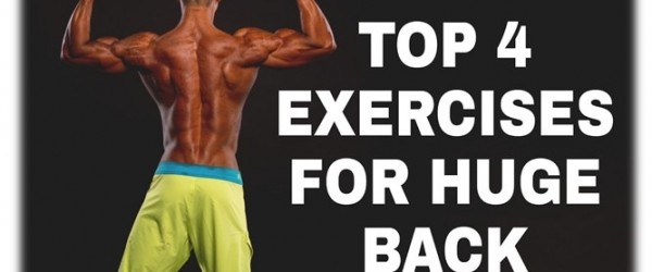 Top 4 exercises for huge back muscles
