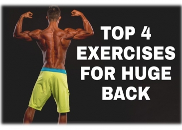exercises for huge back muscles