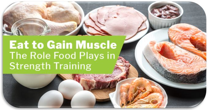 Best diet for gaining muscle and burn fat