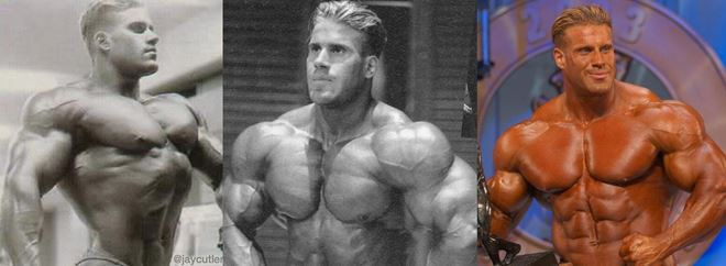 Jay Bodybuilder Career
