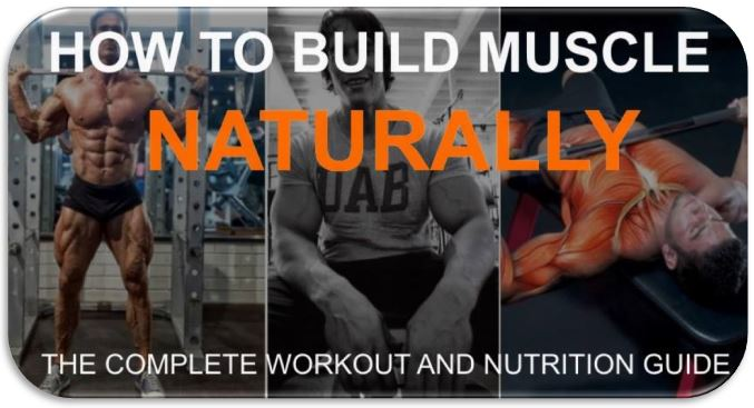 build muscle in one month