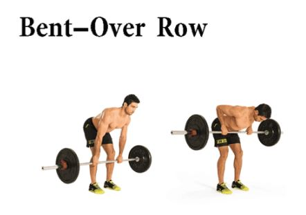 Bent-Over Row Exercise