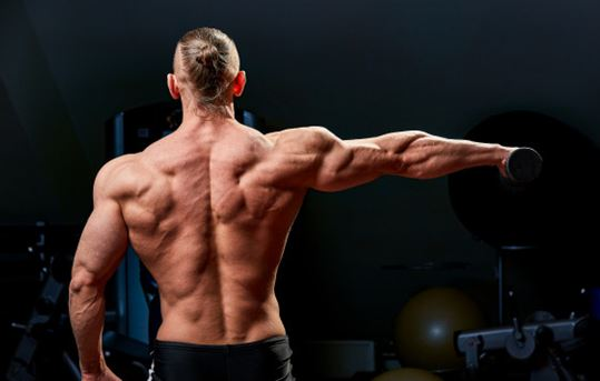Build back Muscle by Workout Smart