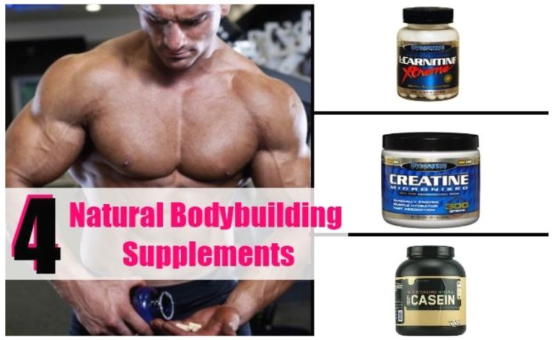 Supplements for Building Back Muscles